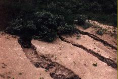 Rills in een vers overstoven oppervlak.